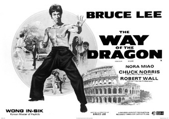 Bruce Lee Way Of The Dragon Maxi Poster