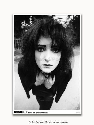 Laminated - Siouxsie & The Banshees - Holland Park 1981 - A1 Poster