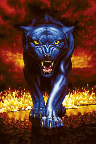 Laminated - Black Panther - Fire - Maxi Poster