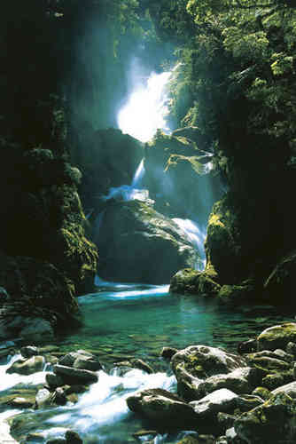 New Zealand Waterfall - Maxi Paper Poster