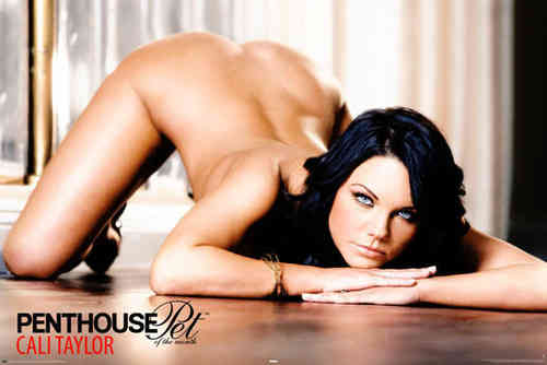 Penthouse Cali Taylor - Maxi Paper Poster