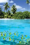 Tropical Scenery II - Maxi Paper Poster