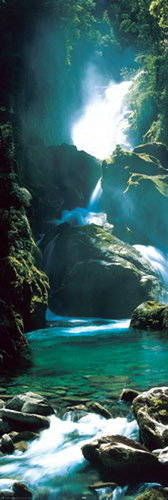 New Zealand Waterfall - Door Paper Poster