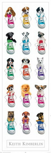 Keith Kimberlain Sneakers - Door Paper Poster