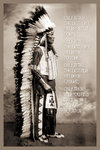 Chief White Cloud Speaks Standing Maxi Paper Poster