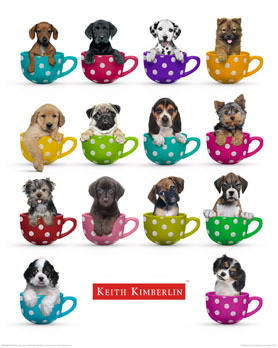 Kieth Kimberlin - Puppies In Coffee Mugs - Mini Paper Poster